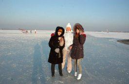 new_year_2015_0015